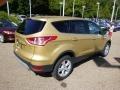 2014 Karat Gold Ford Escape SE 1.6L EcoBoost 4WD  photo #8