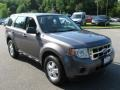 Sterling Grey Metallic 2009 Ford Escape XLS
