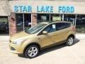 2014 Karat Gold Ford Escape SE 2.0L EcoBoost 4WD  photo #1