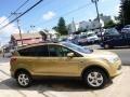 2014 Karat Gold Ford Escape SE 2.0L EcoBoost 4WD  photo #4