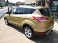 2014 Karat Gold Ford Escape SE 2.0L EcoBoost 4WD  photo #6