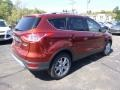 2014 Sunset Ford Escape Titanium 2.0L EcoBoost  photo #2