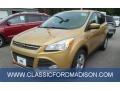 2014 Karat Gold Ford Escape SE 1.6L EcoBoost  photo #1
