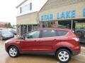 2014 Sunset Ford Escape SE 2.0L EcoBoost 4WD  photo #7