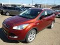 2014 Sunset Ford Escape Titanium 2.0L EcoBoost 4WD  photo #4