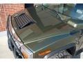 Sage Green Metallic - H2 SUV Photo No. 29