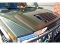 Sage Green Metallic - H2 SUV Photo No. 30