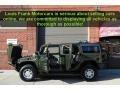 Sage Green Metallic - H2 SUV Photo No. 35