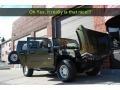 Sage Green Metallic - H2 SUV Photo No. 39