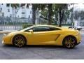 2009 Gallardo LP560-4 Coupe Giallo Halys (Yellow)