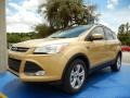 2014 Karat Gold Ford Escape SE 2.0L EcoBoost #98815478
