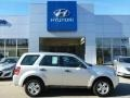 Ingot Silver Metallic 2011 Ford Escape XLS