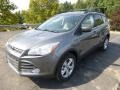 2014 Sterling Gray Ford Escape SE 1.6L EcoBoost 4WD  photo #4